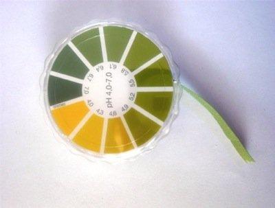 Вагиноз бактериальный: лечение и причины возникновения