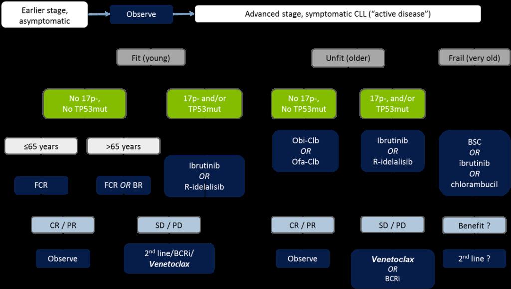 алгоритм лечения для хронической лимфоцитарной лейкемии