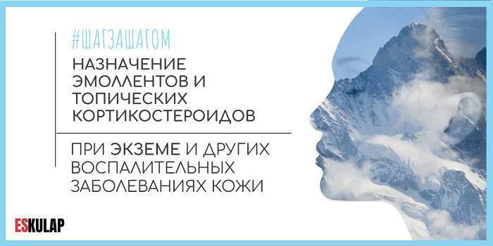 Инфекция брюшного тифа